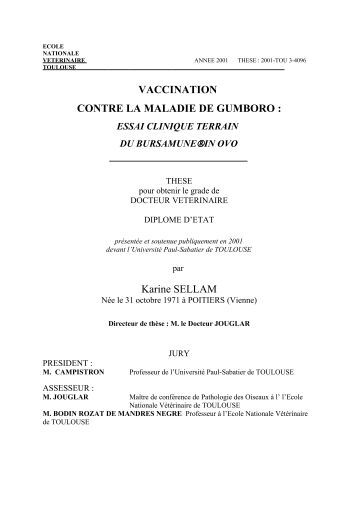 msss.gouv.qc.ca professionnels vaccination documentation
