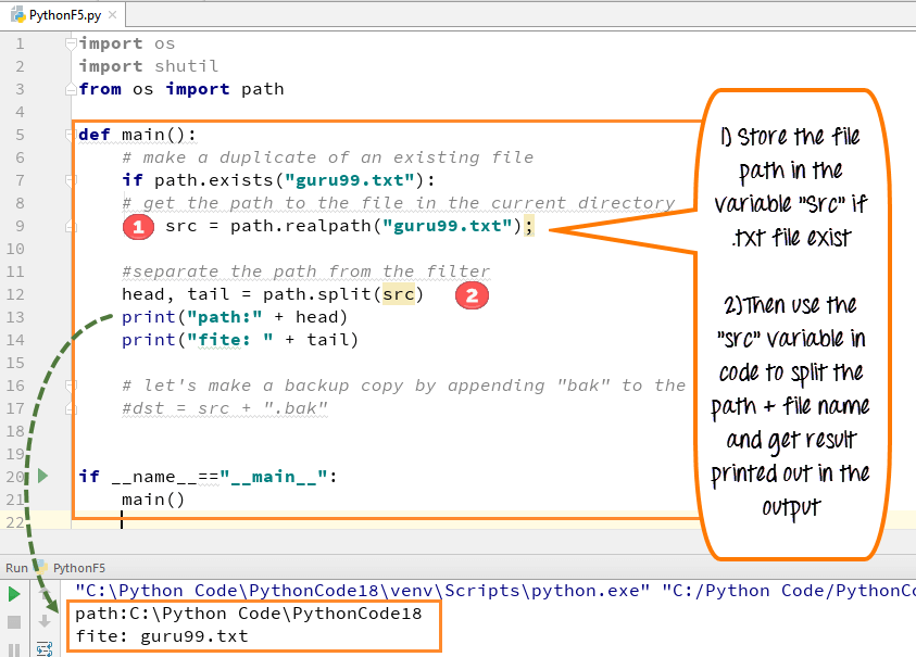 copy text from one document to another python